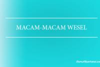 macam-macam wesel
