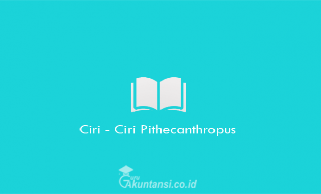 Ciri-Ciri-Pithecanthropus