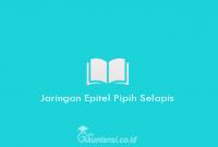 Jaringan-Epitel-Pipih-Selapis
