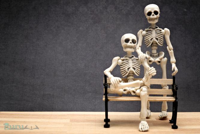 Anatomi-Tulang-Manusia