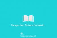 Pengertian-Sistem-Endokrin