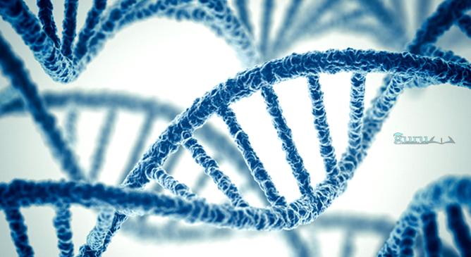 Sejarah-Genetika
