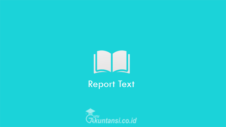 Report-Text