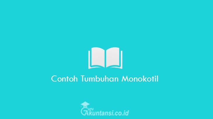 Contoh-Tumbuhan-Monokotil