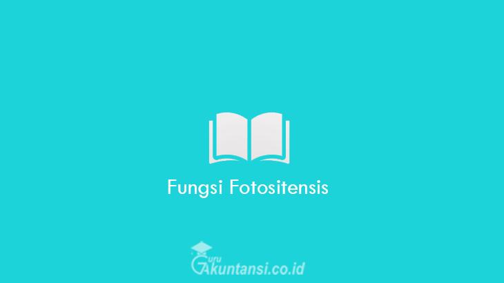 Fungsi-Fotositensis
