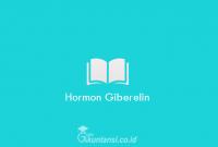 Hormon-Giberelin
