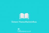 Sistem-Nemathelm