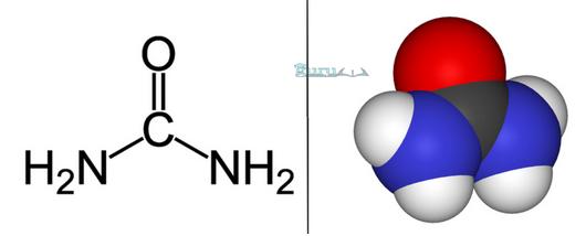 Contoh-Rumus-Kimia-Urea