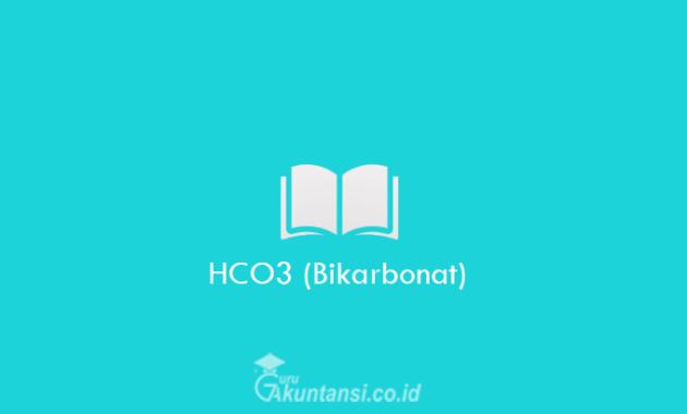 HCO3-Bikarbonat