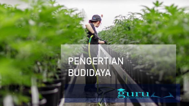 Pengertian-Budidaya1a