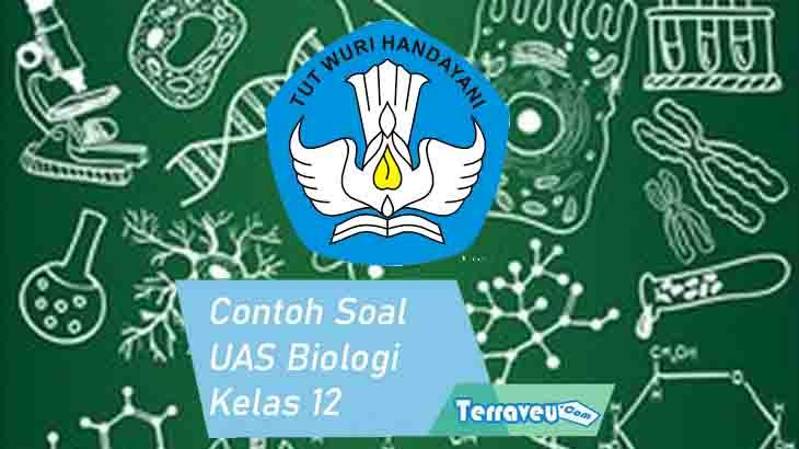 Contoh Soal UAS Biologi Kelas 12 SMA MA dan Kunci Jawabnya Lengkap